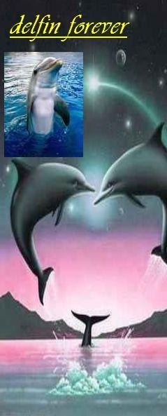 delfinek_.jpg